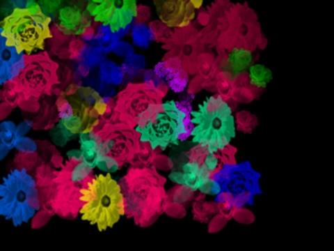 20120501-000425.jpg
